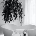 Een goed bad kopen